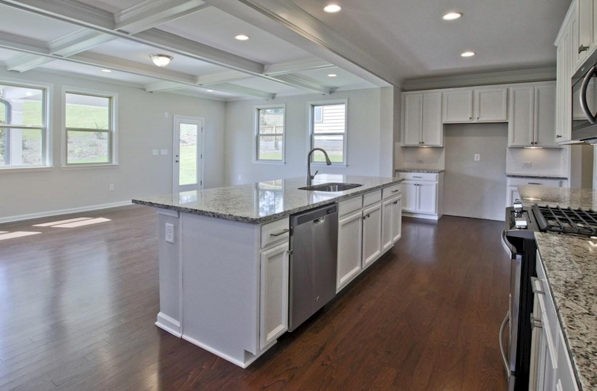 Aspen II quick move-in Kitchen with granite countertops