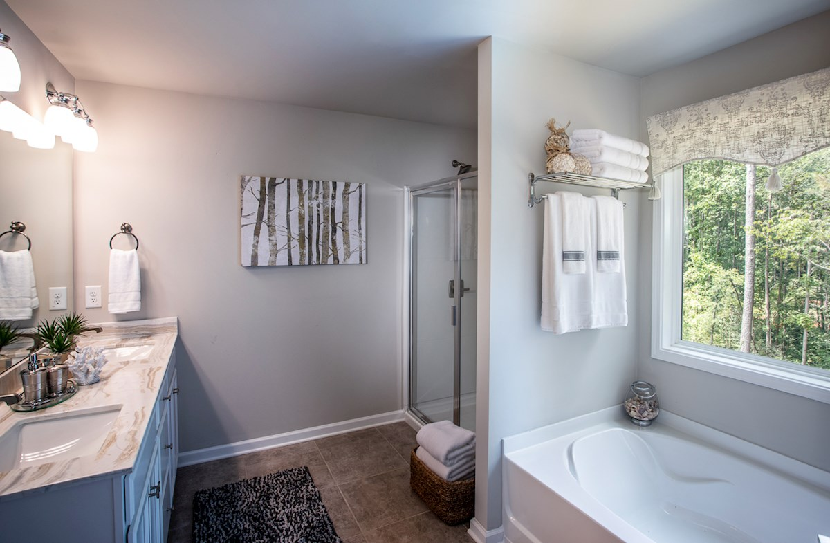 Master bathroom with soaker tub