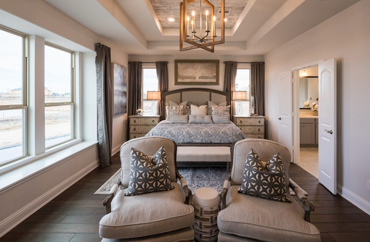 Amira  Harper master bedroom with tray ceiling and sitting area