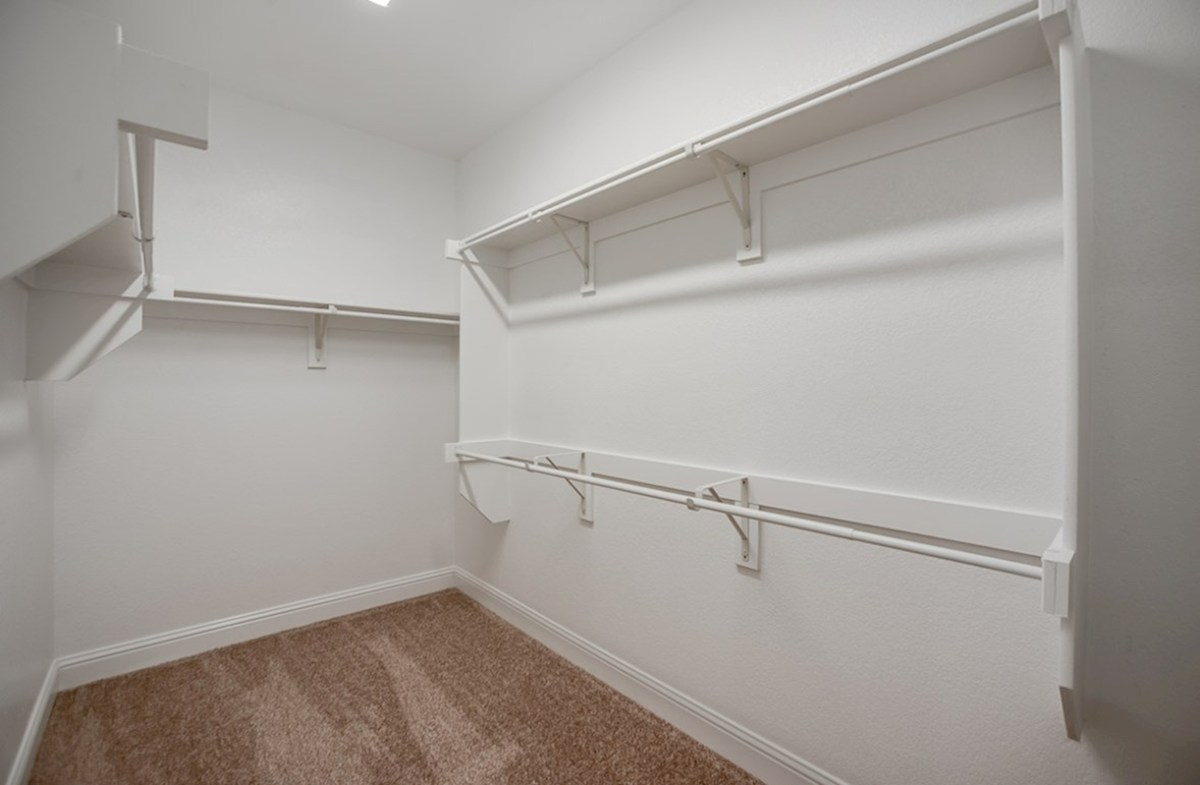 Millbrook quick move-in Millbrook large walk-in closet with carpeted floor