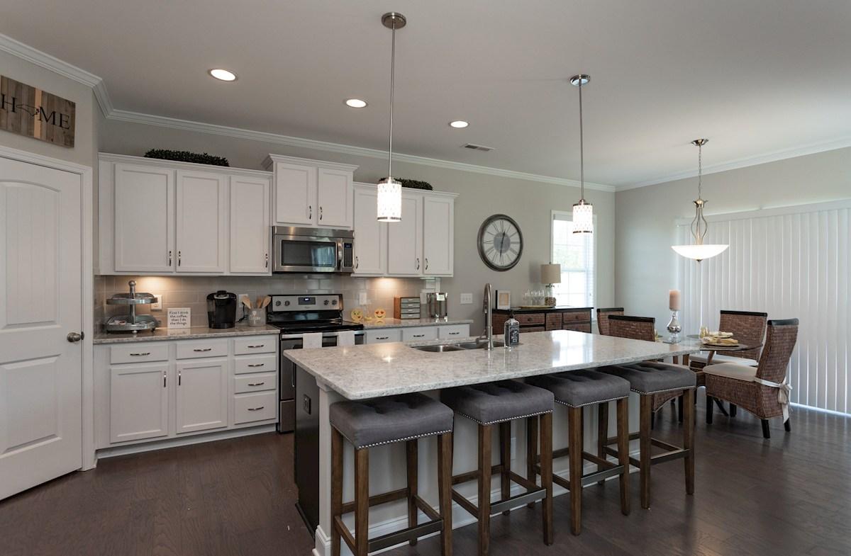 Pamlico kitchen